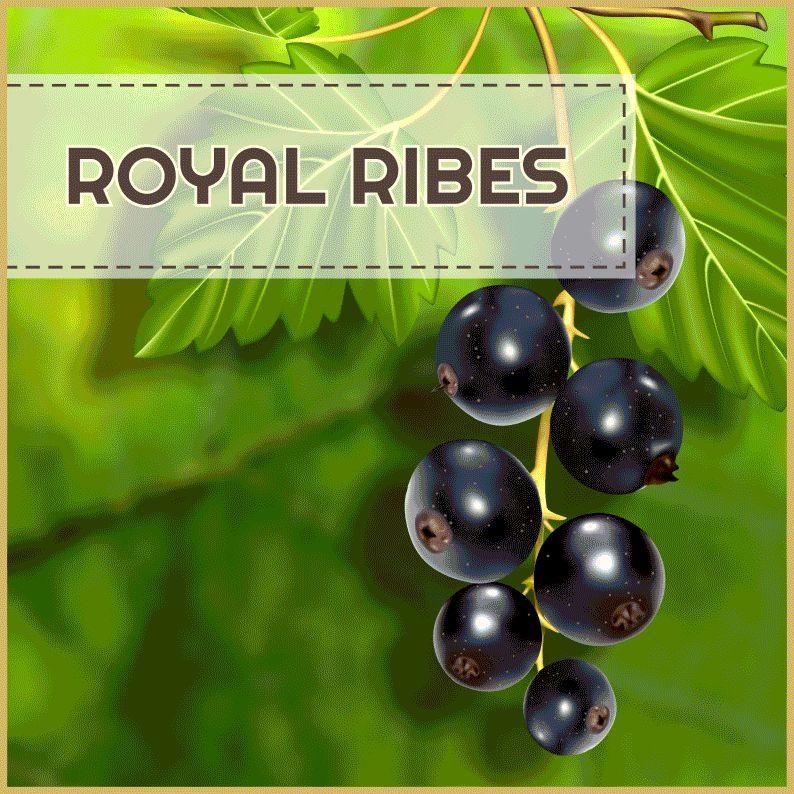 MJ Royal Ribes