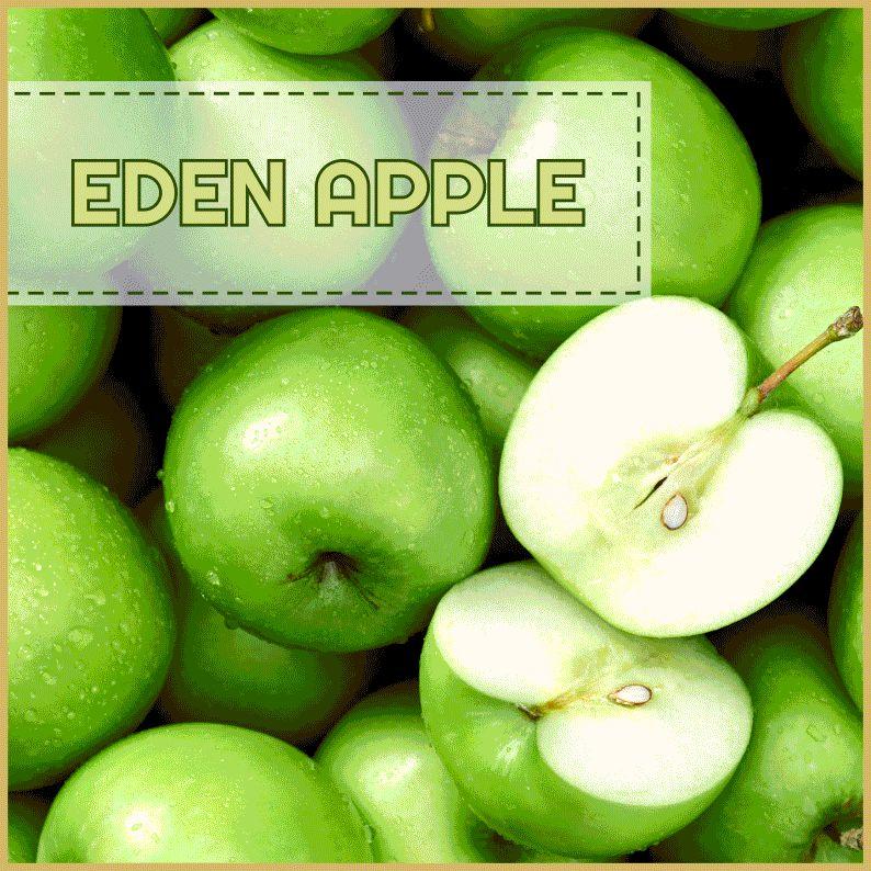 MJ Eden Apple 60ml
