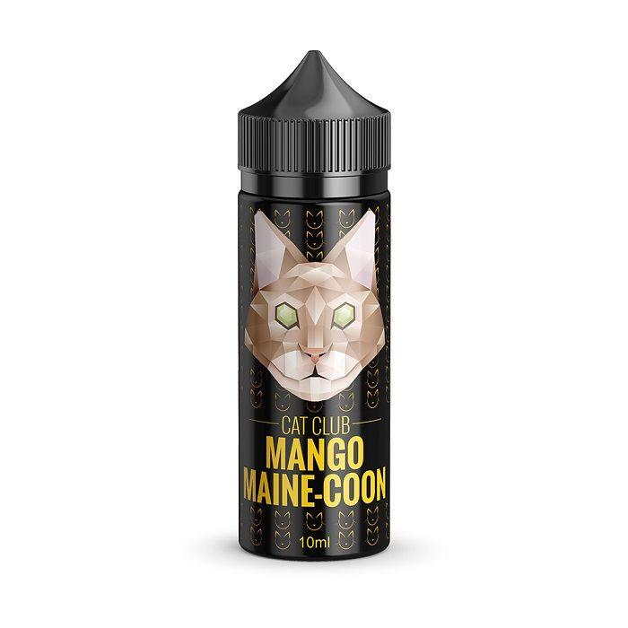 CC Mango Maine-Coon
